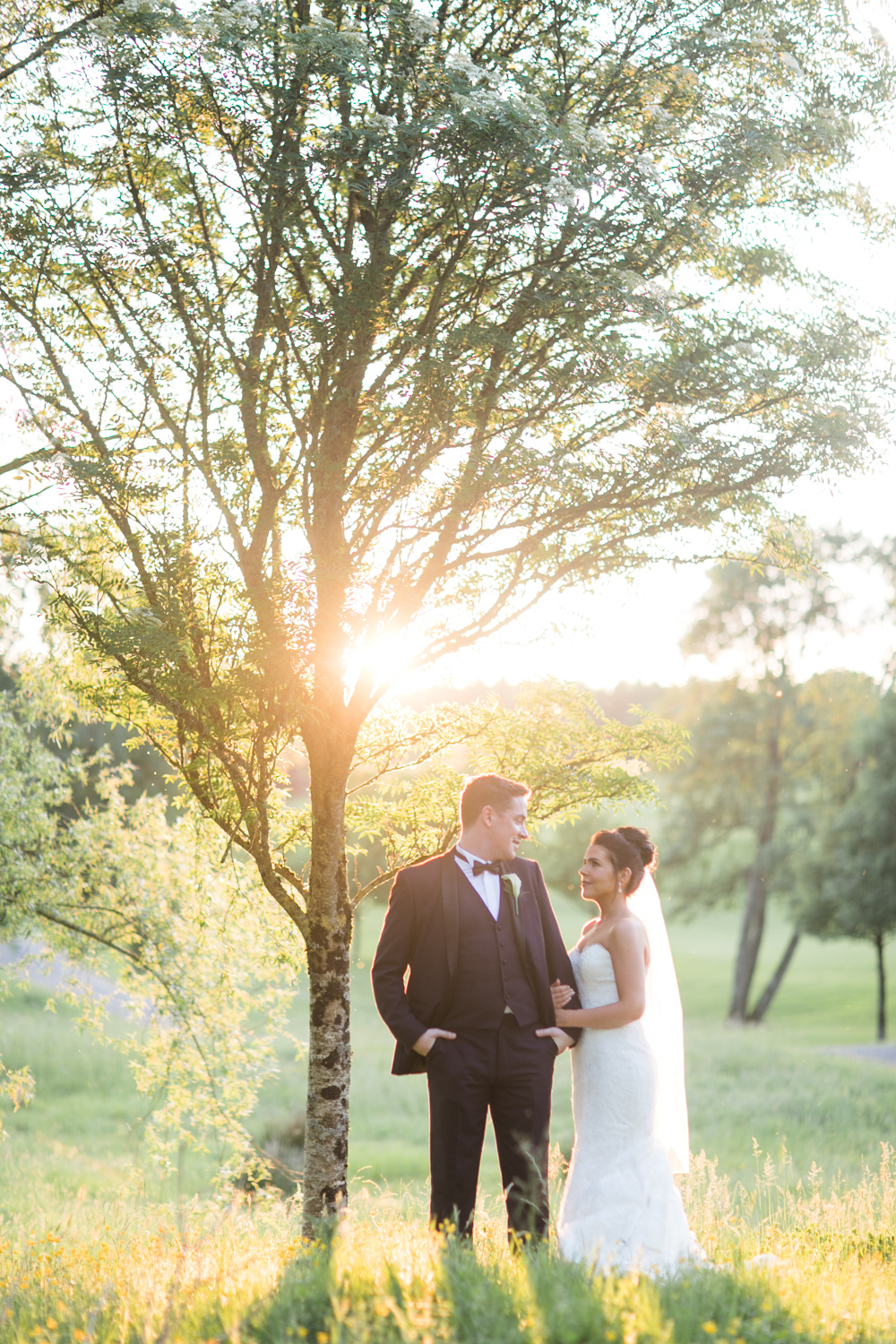 bride and groom standing at a birch tree in the meadow in golden evening light in slieve russell hotel