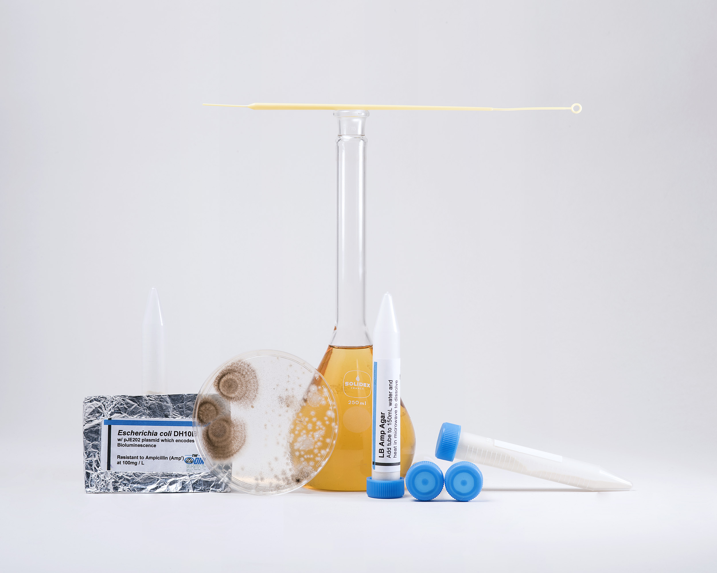 A host of home laboratory kits are available for purchase online. They can include everything a DIY biologist needs, from instruments to plasmids and the substances to cultivate them in Petri dishes, from genetically modified cells and bacteria to bioluminescent cuttlefish or fireflies.