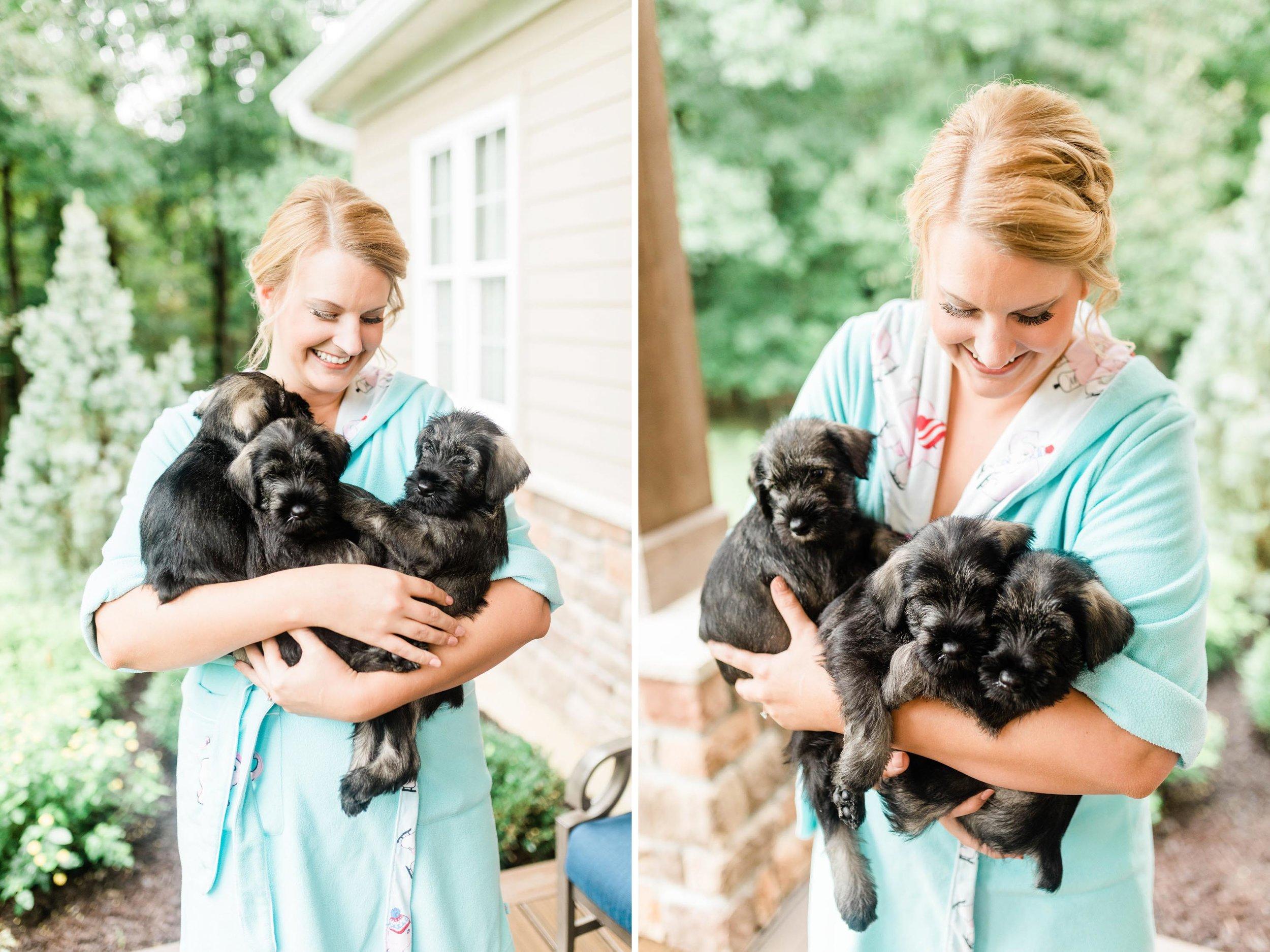 bride with puppies.jpg