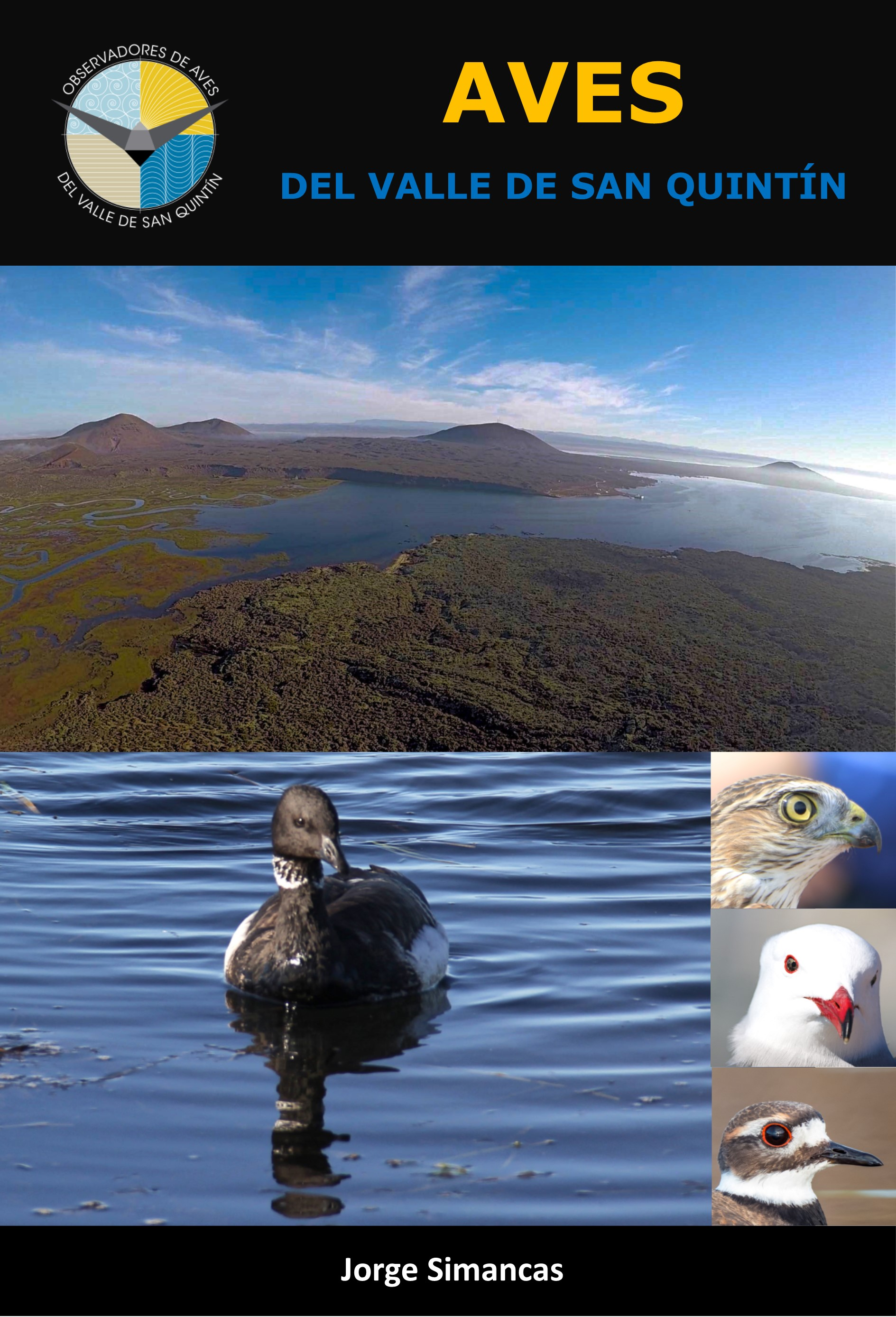 Guía de aves del Valle de San Quintín. san quintín bird guide. ADQUIERE ESTA GUÍA EN LAS INSTALACIÓNES DEL JARDÍN. adquire this guide at JARDÍN BOTANICO.