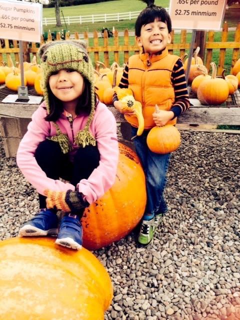 WOW! That's a lot of pumpkin bread, kiddos!