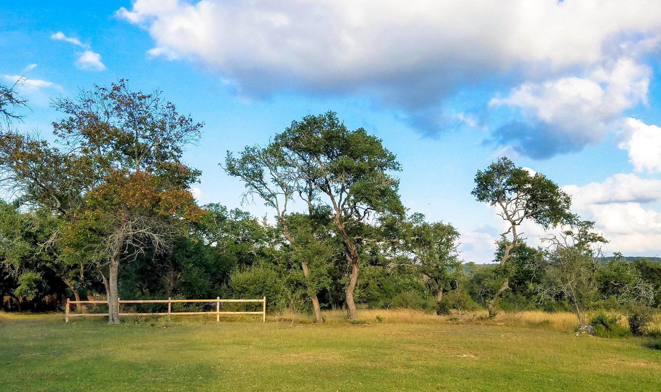 Backyard1_EDIT1.jpg