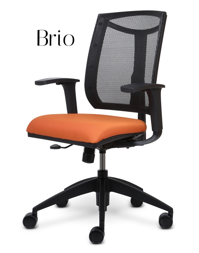 Brio Series