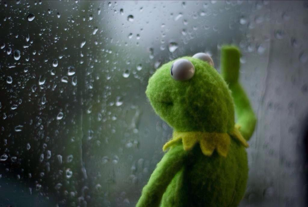 Kermit the Frog reflecting on his societal conditioning to self-destruct when presented with moments of love, honesty, and vulnerability.