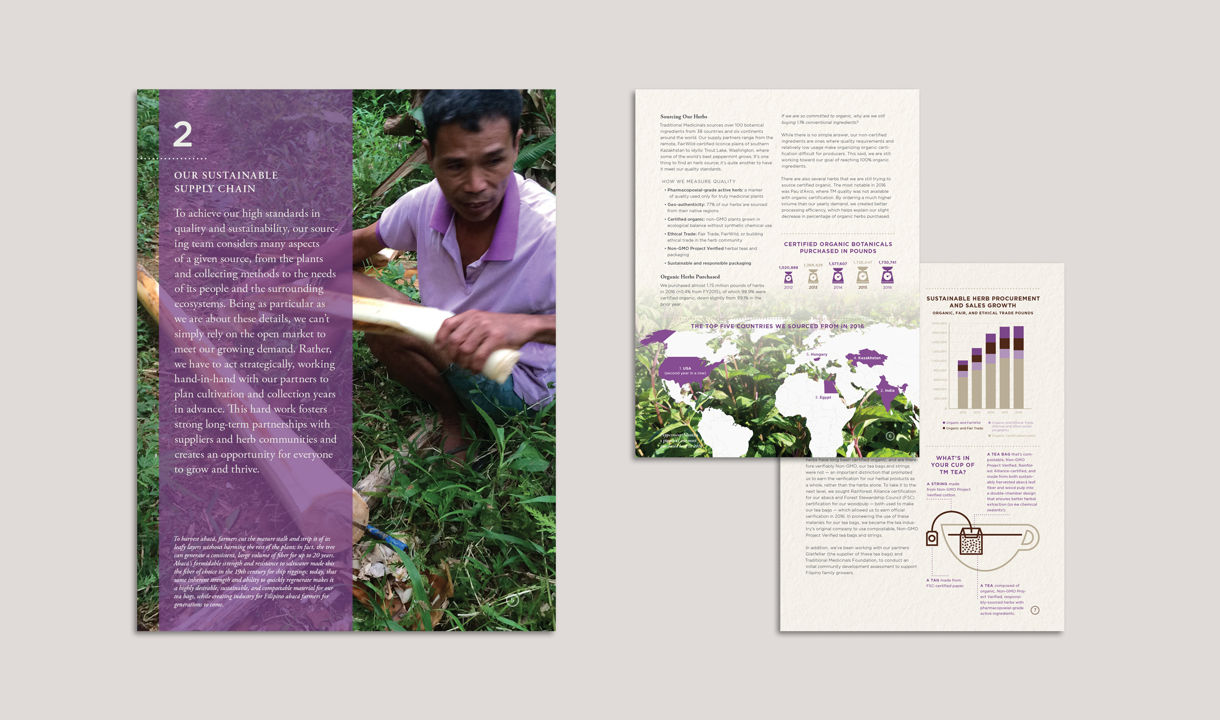 Digital Sustainability Report (Chapter)