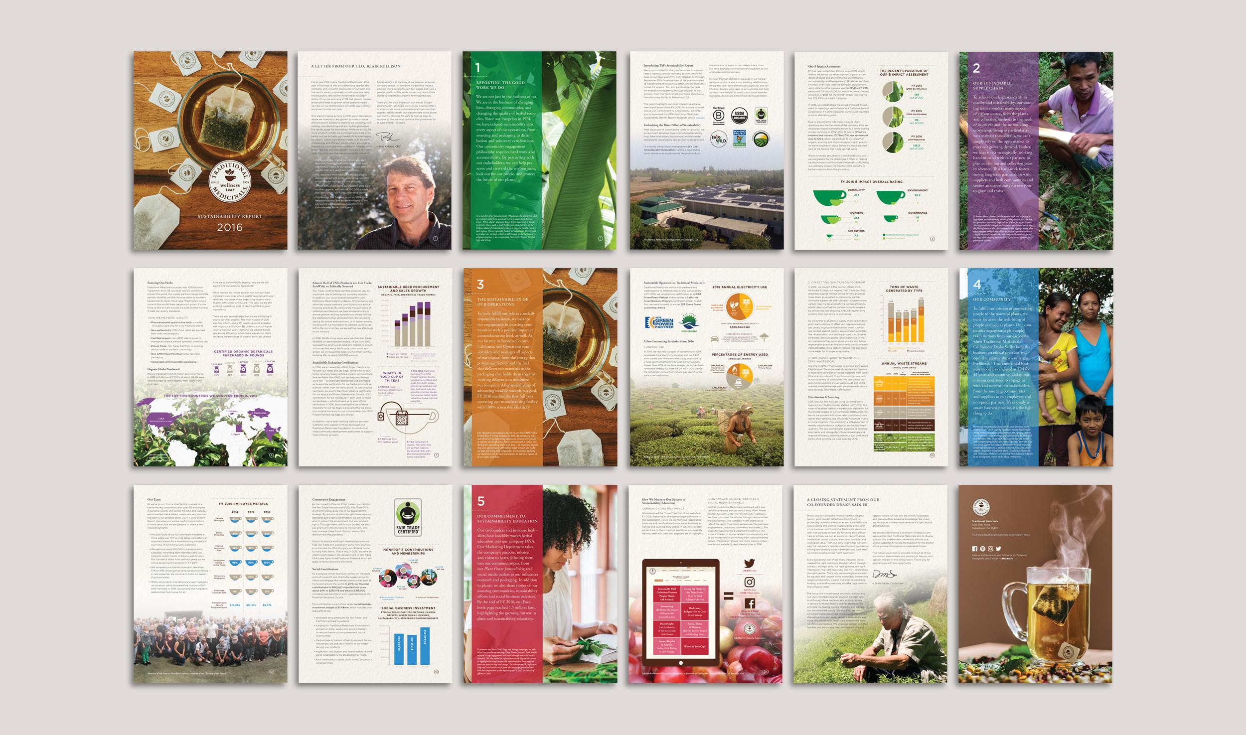 Digital Sustainability Report (Entire Document)