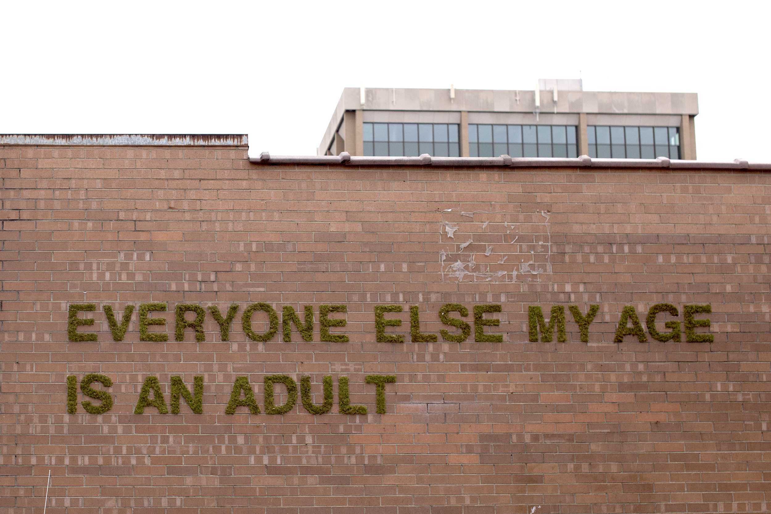 adult_1.jpg