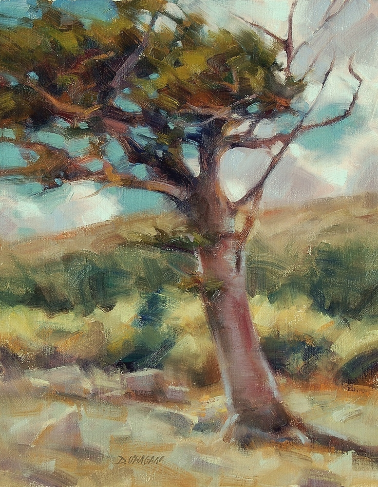 """Bristlecone Pine, Mt Evans"" </BR>16"" x 20""  </BR>Oil"