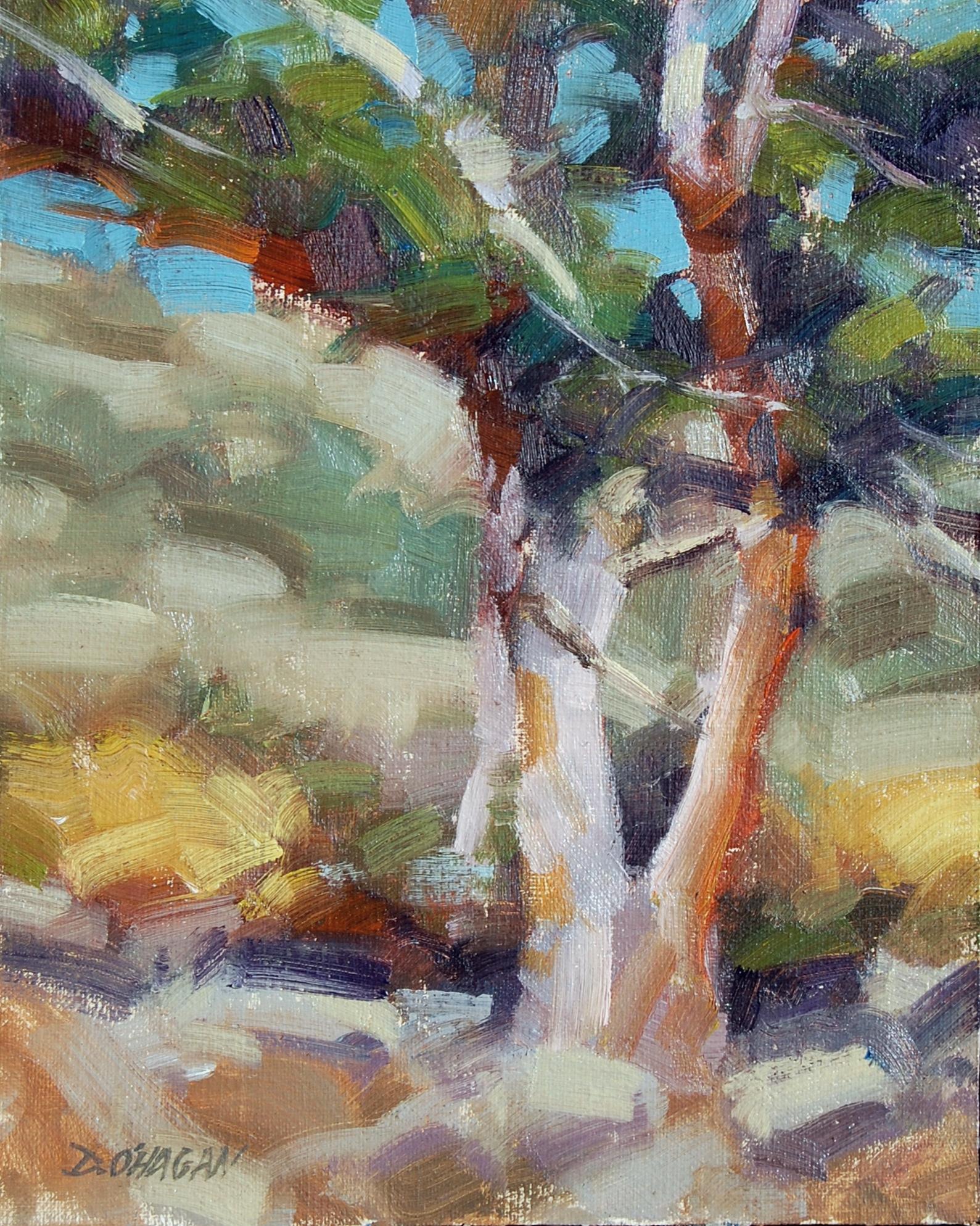 """""""Bristlecone Pine"""" </BR>8"""" x 10""""  </BR>Oil"""