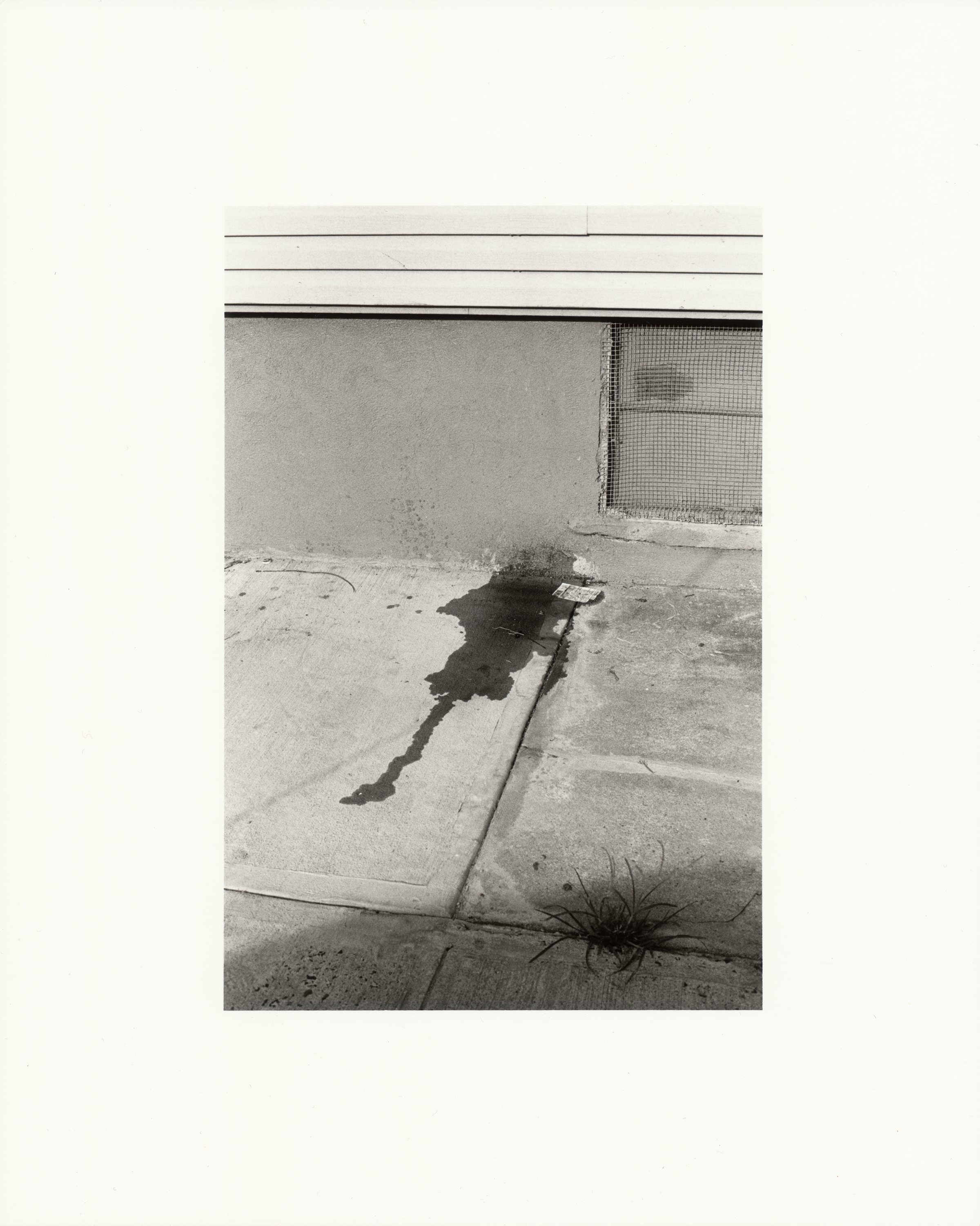 Untitled , 2013  gelatin silver print, selenium toned; printed 2019  image 4.3 x 6.5 inches  paper 8 x 10 inches