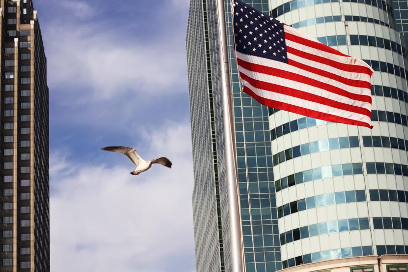america-Usa-bird-sky-is-a-limit