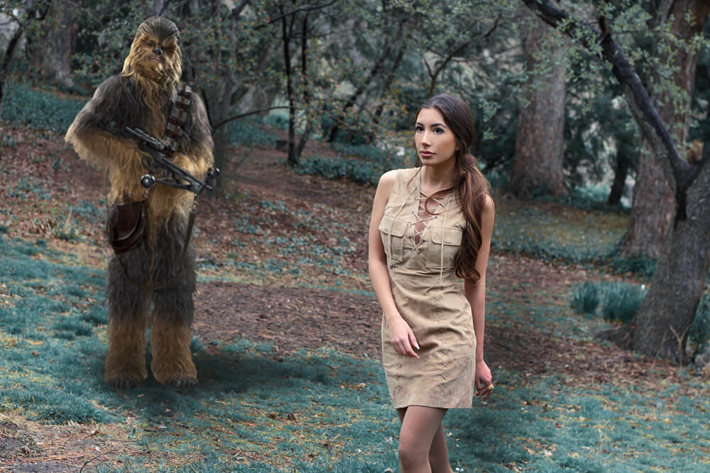 C'mon,Chewy. I know you miss Hans Solo, but we need to keep going!