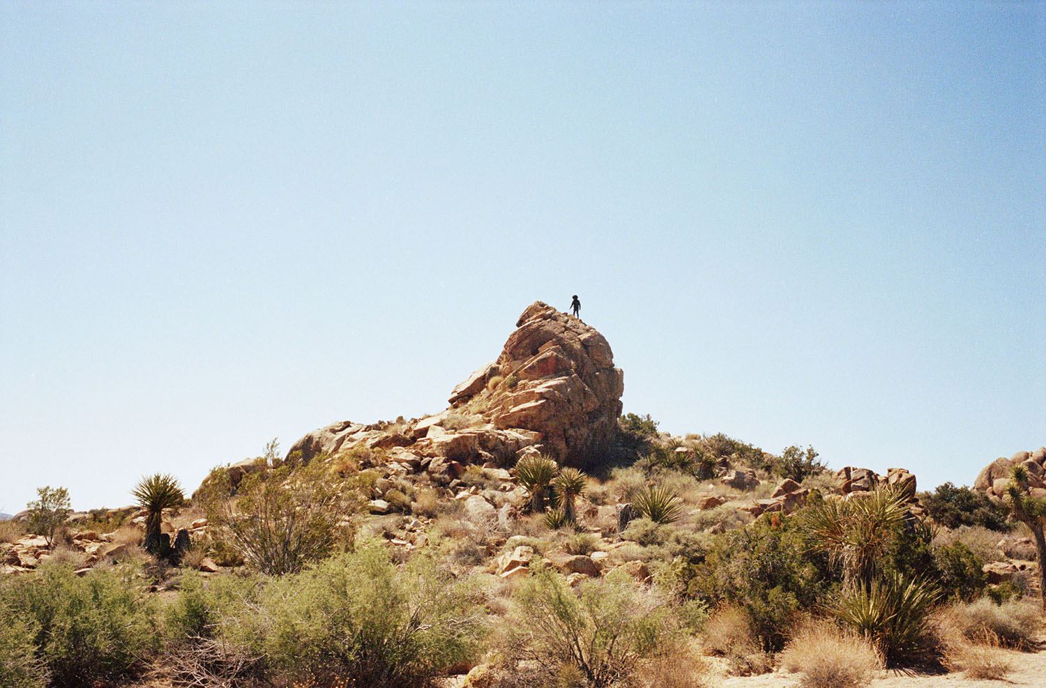 Chris McElrath, Artist, Joshua Tree, California, 2015