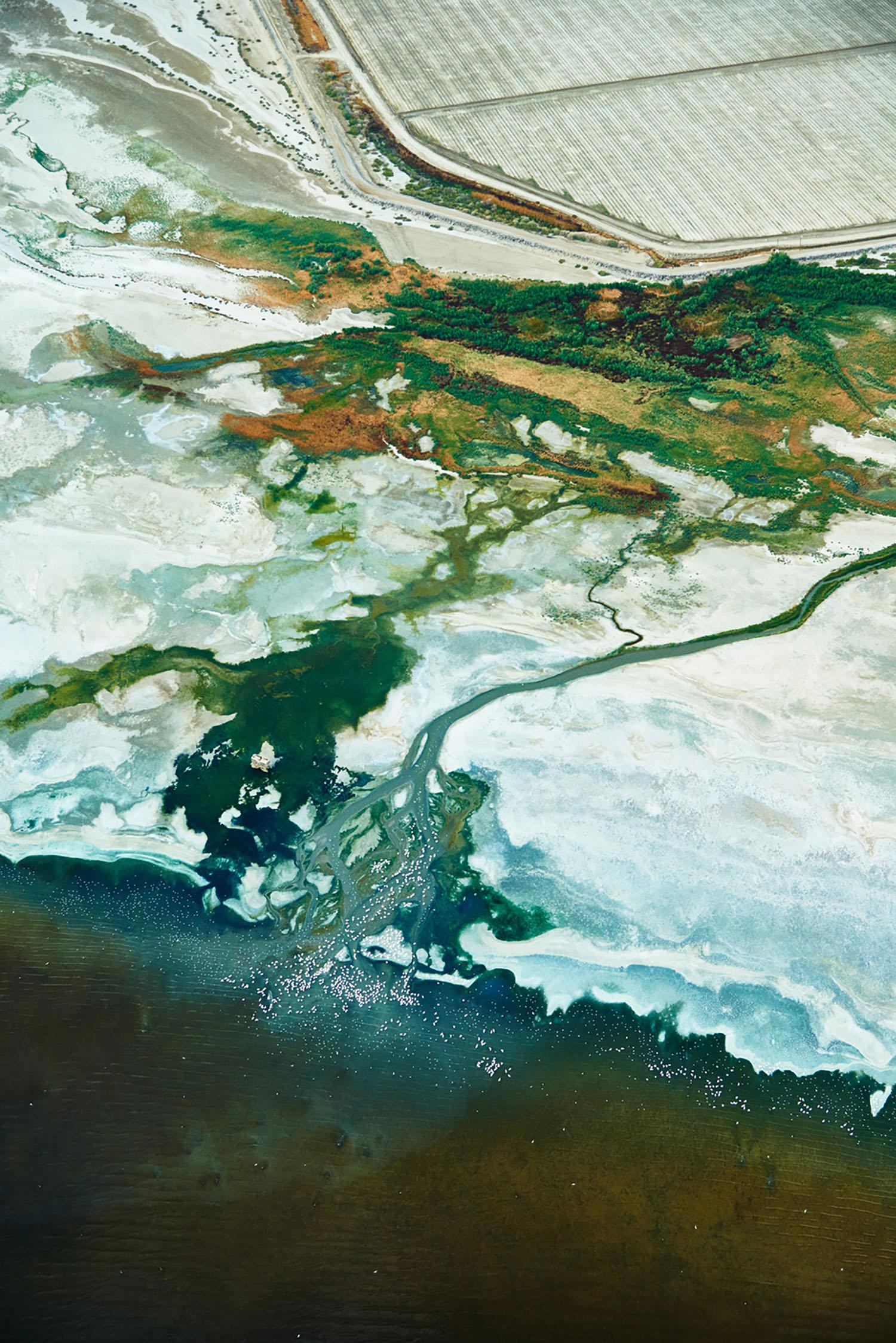 Salton Sea, Imperial Valley, California, 2015