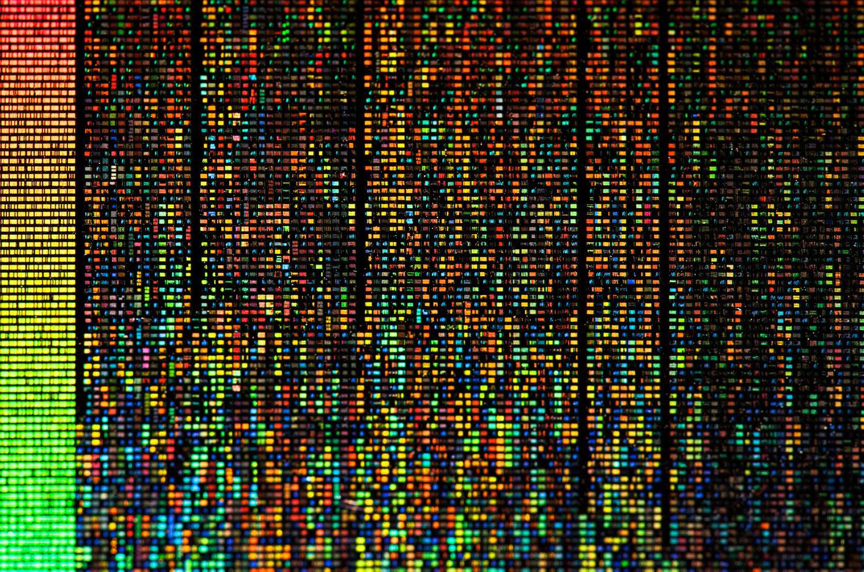 The Rosetta Disk, Human Language Archive, 2008