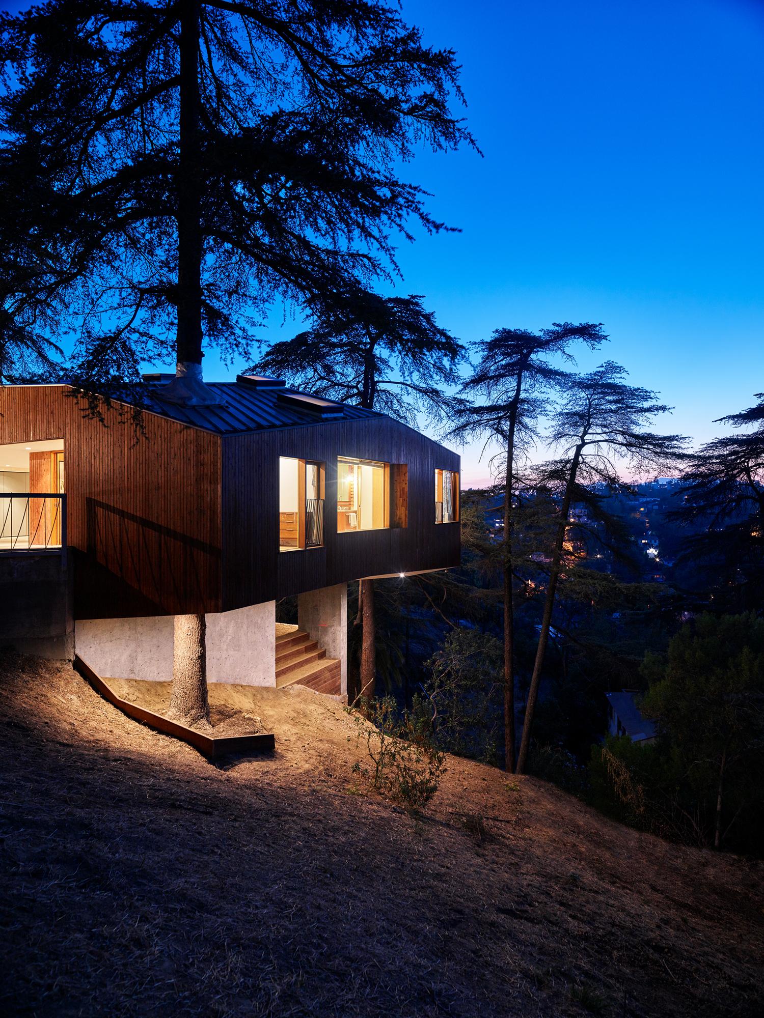 Simon Storey House, Los Angeles, California, 2016