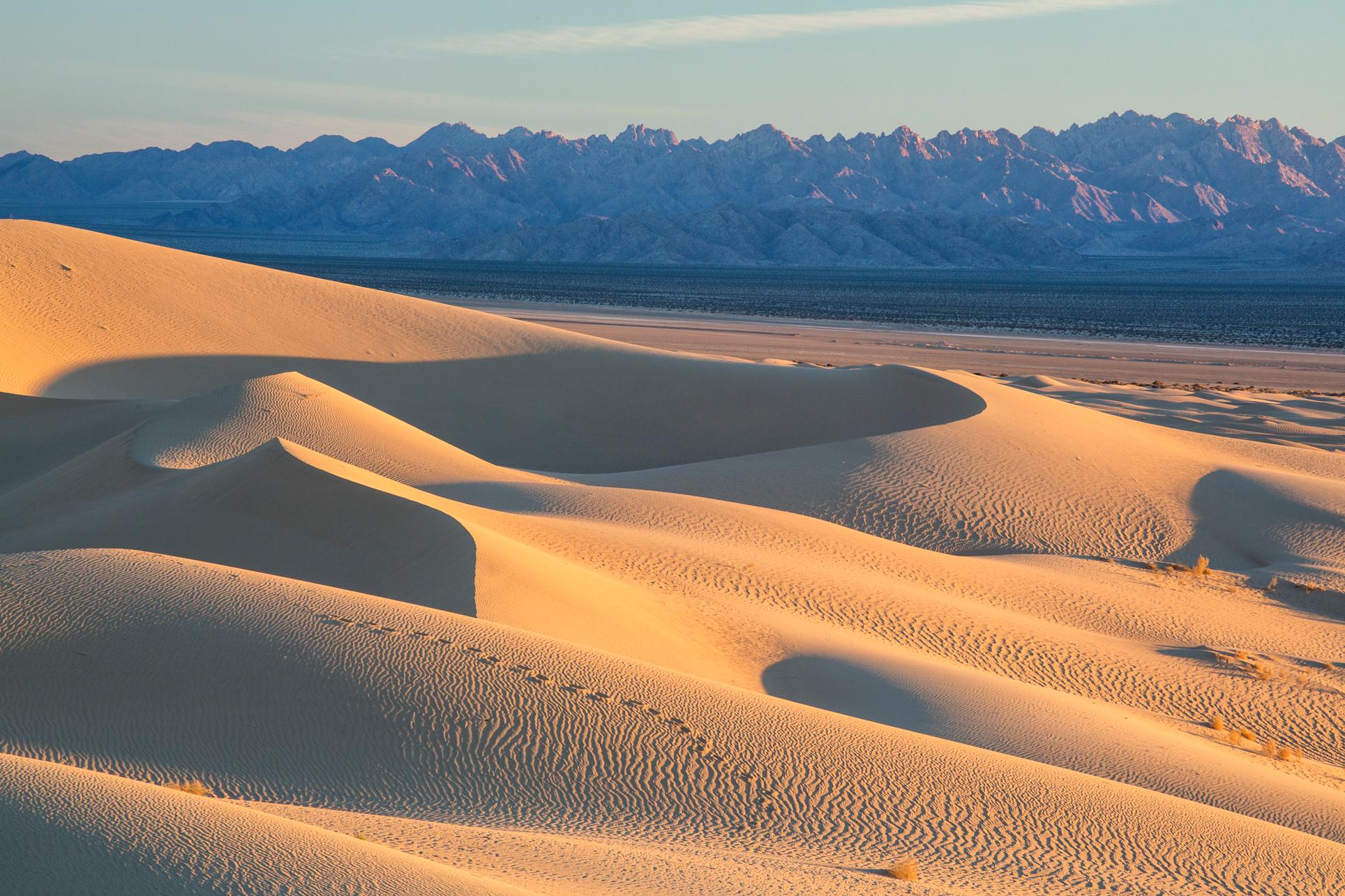 Mojave_Trails_National_Monument_dunes.jpg