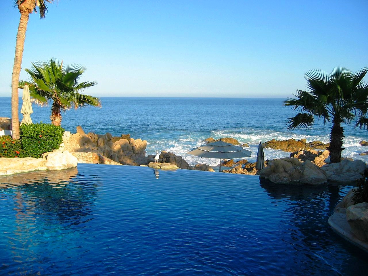 1280px-Infinity_Pool_One_and_Only_resort_Cabo_San_Lucas.jpg