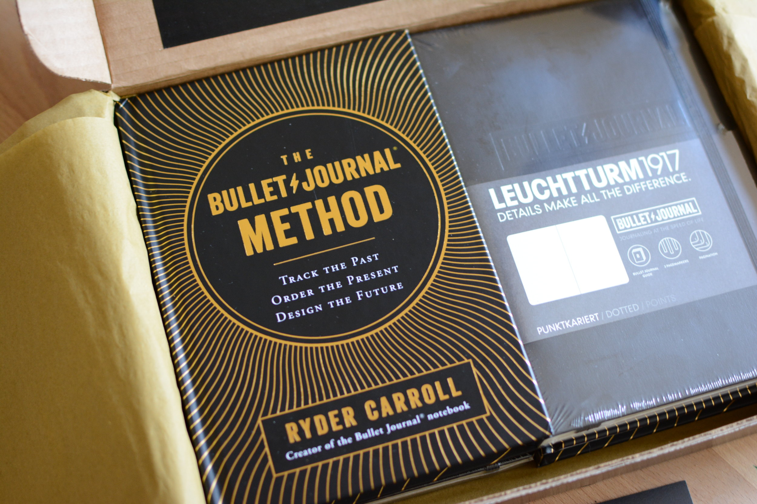 The Bullet Journal Method Book Review and Giveaway. Tiny Ray of Sunshine.10.JPG