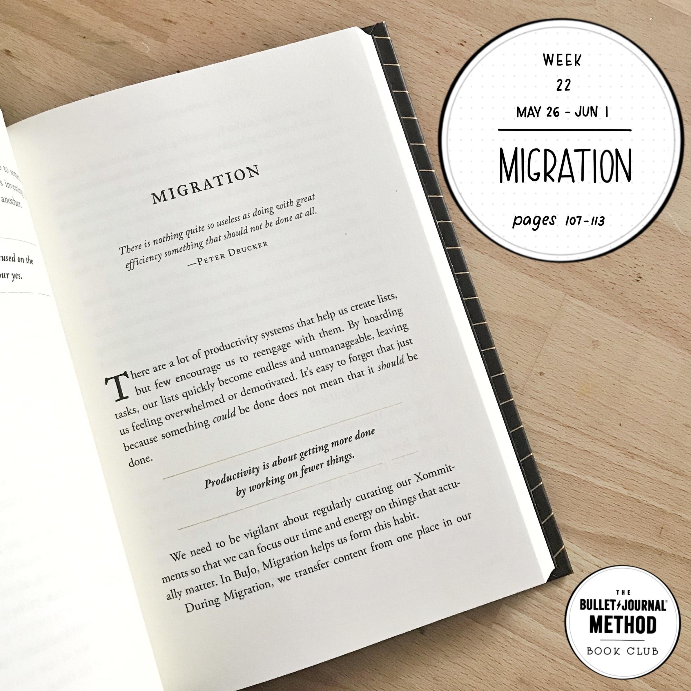 Wk_22_Migration_TBJMBC.jpg