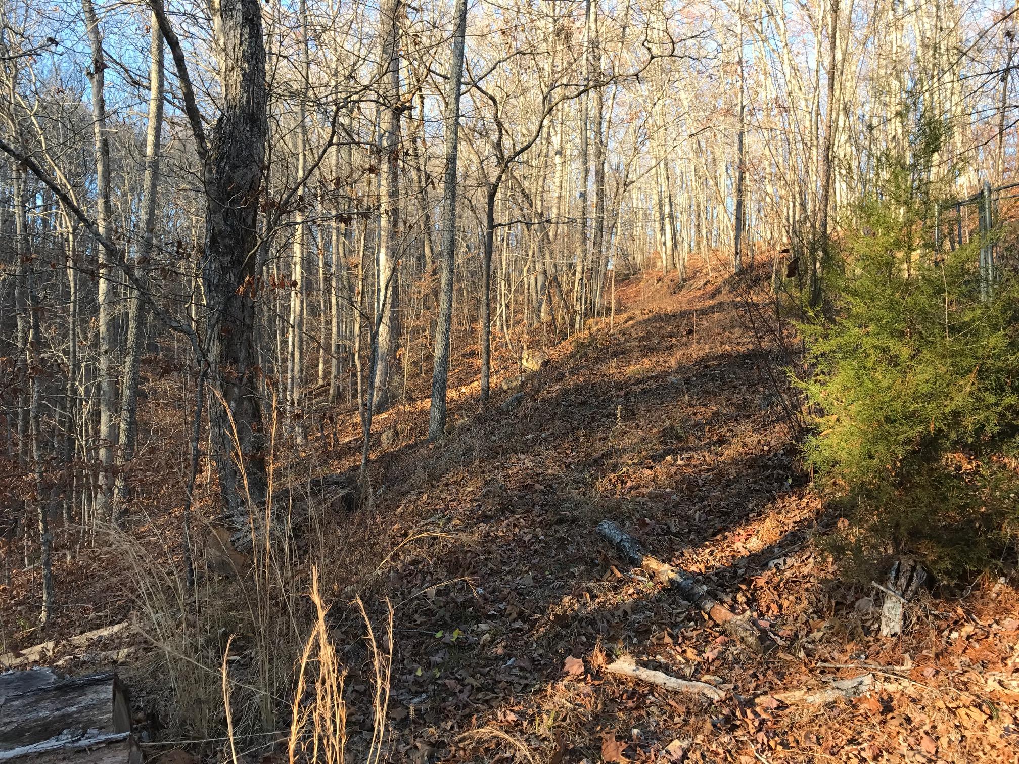 Pond House Trail.JPG