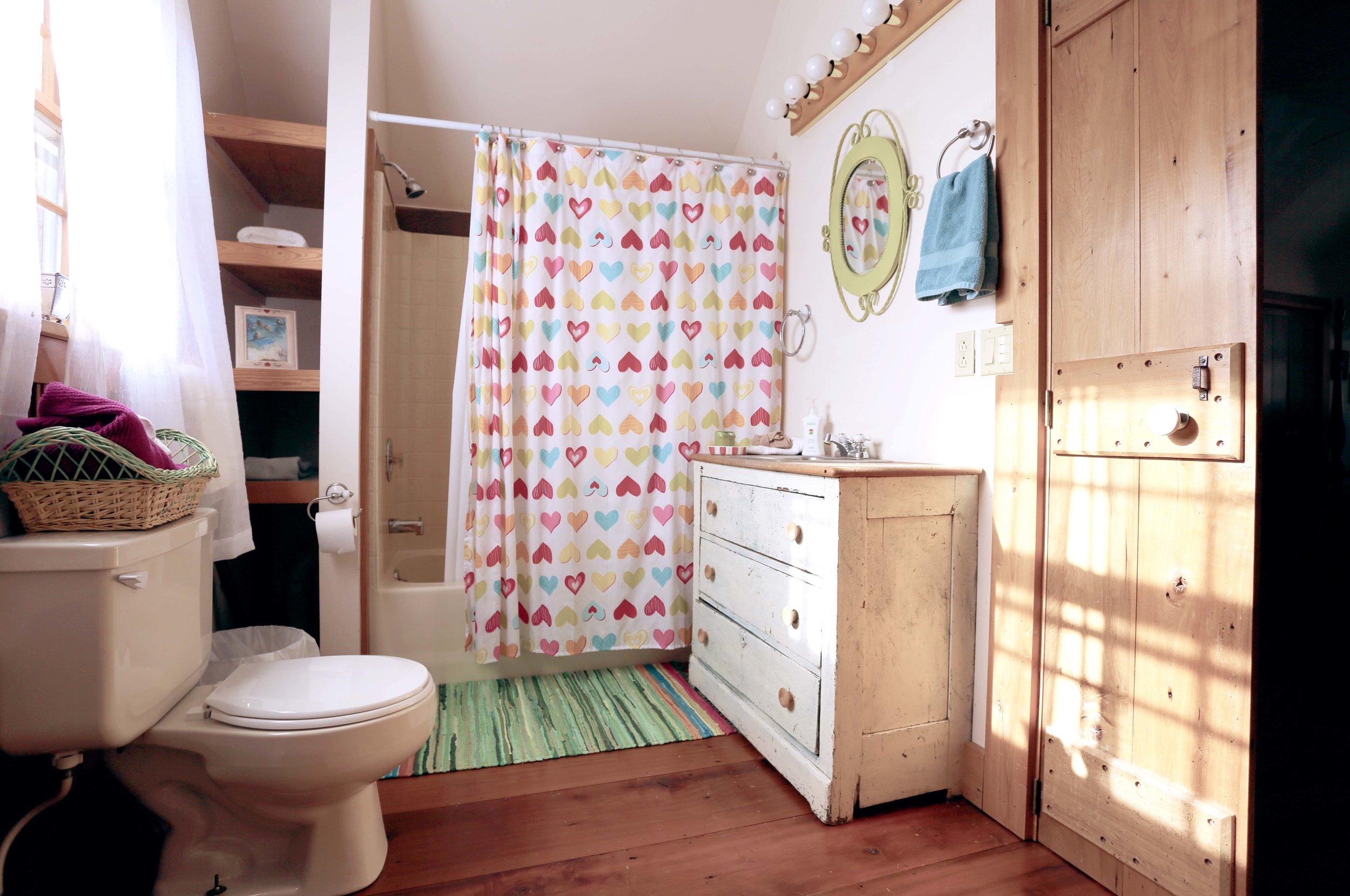 LS Up stairs Bathroom.jpg