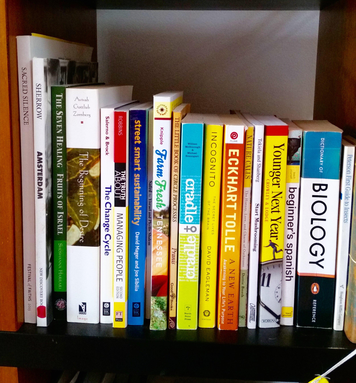 books in shelf.jpg