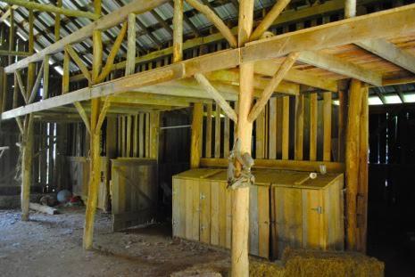 Barn poles.jpg