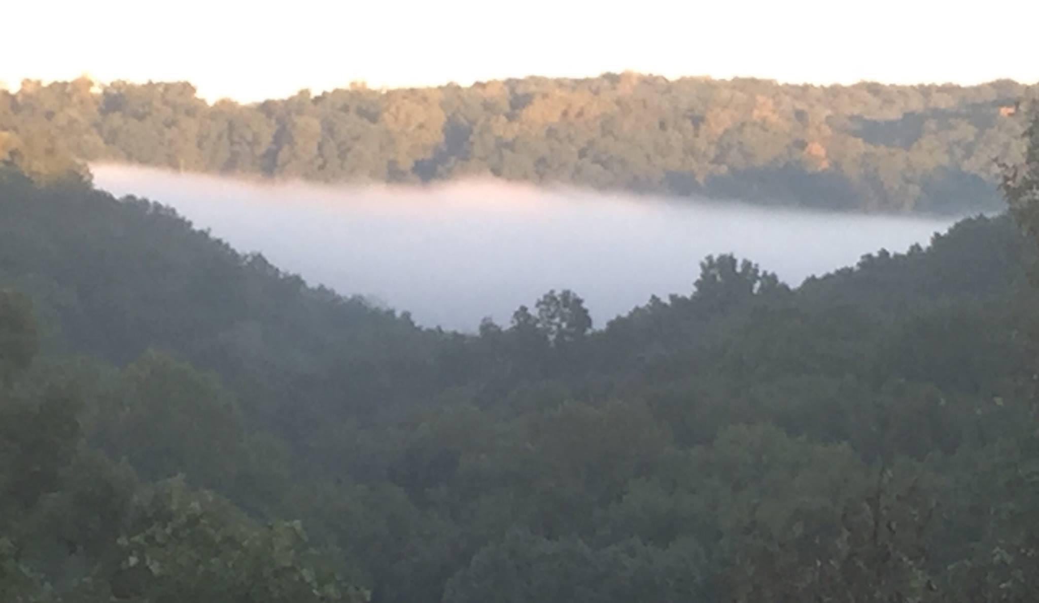 Mist on lake from Overlook.JPG