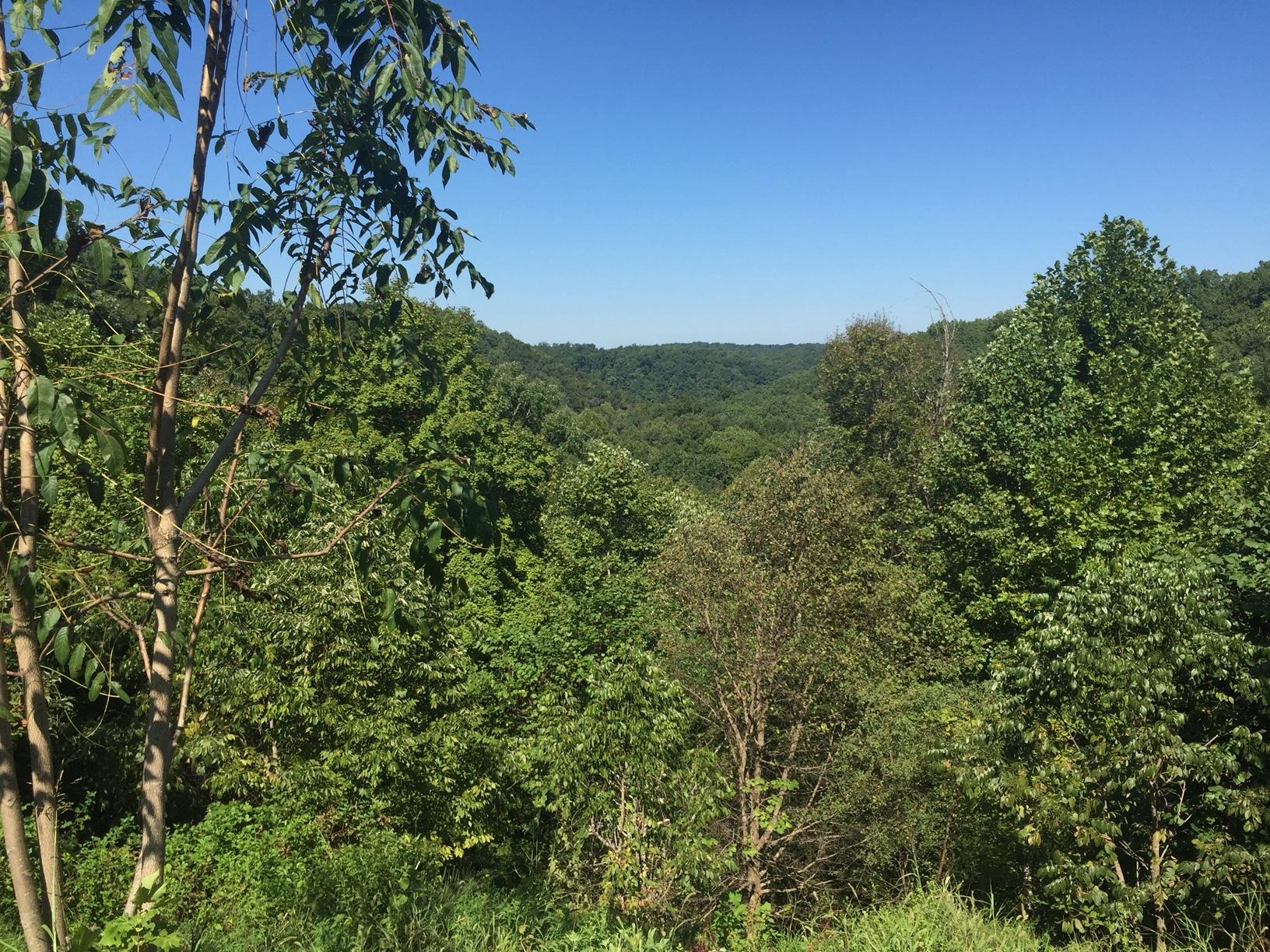 View from Overlook.JPG