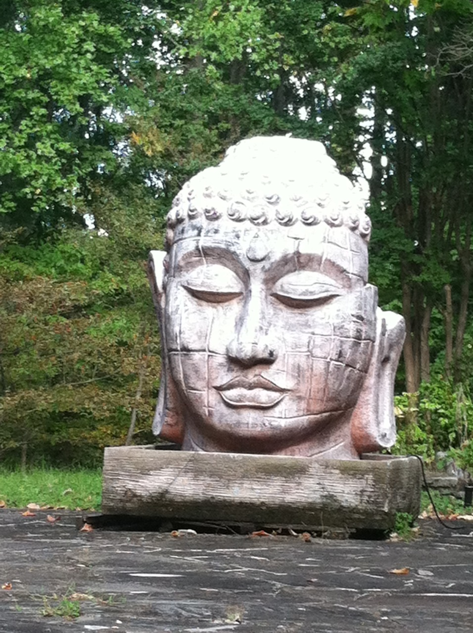 buddha head copy.JPG
