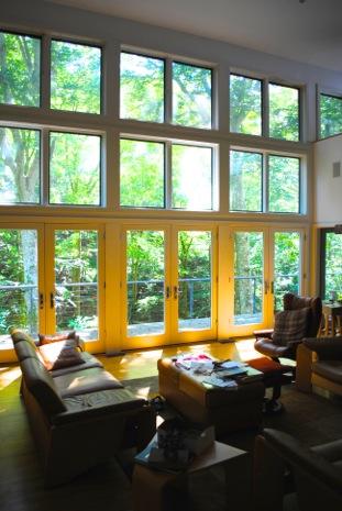 Parrot living room.jpeg