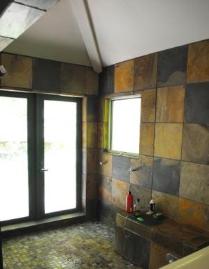 Parrot Shower.jpeg