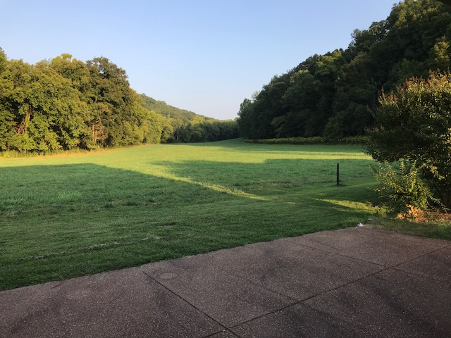 McP pasture view fropm porch.JPG