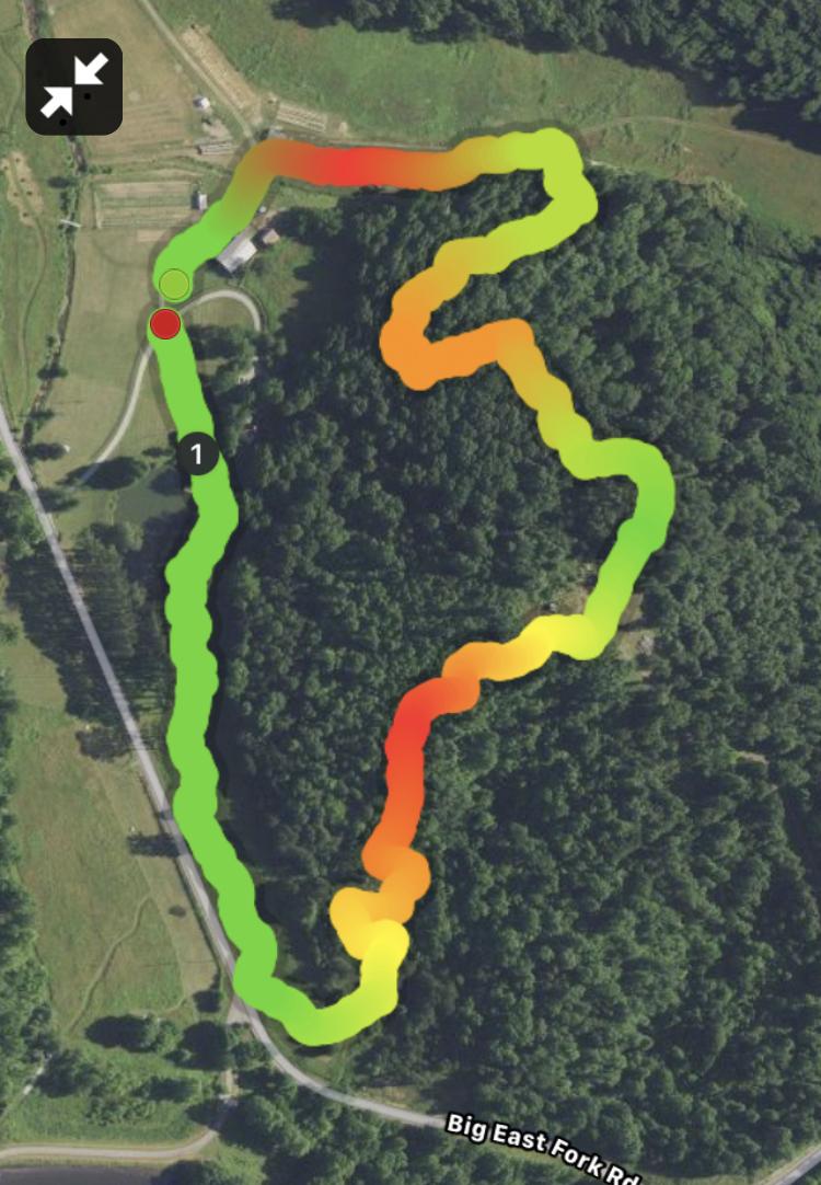 Circle Lodge Loop (1.0 mile).jpg