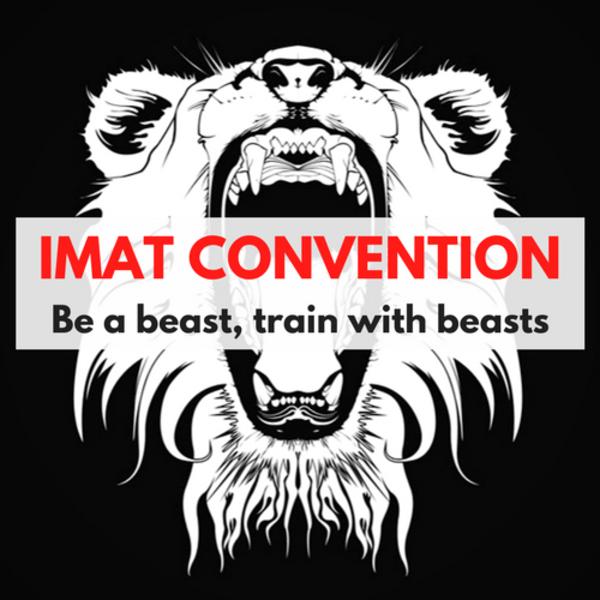 IMATC logo.png