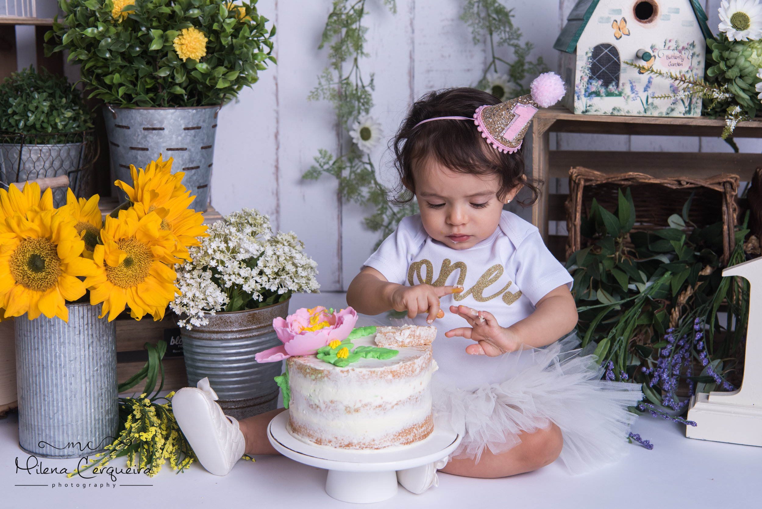 Cake Smash Photography - View cake smash portrait gallery now