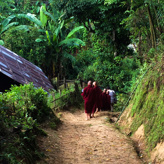 the backroads of Namhsan Township, where Myanmar's best tea is grown