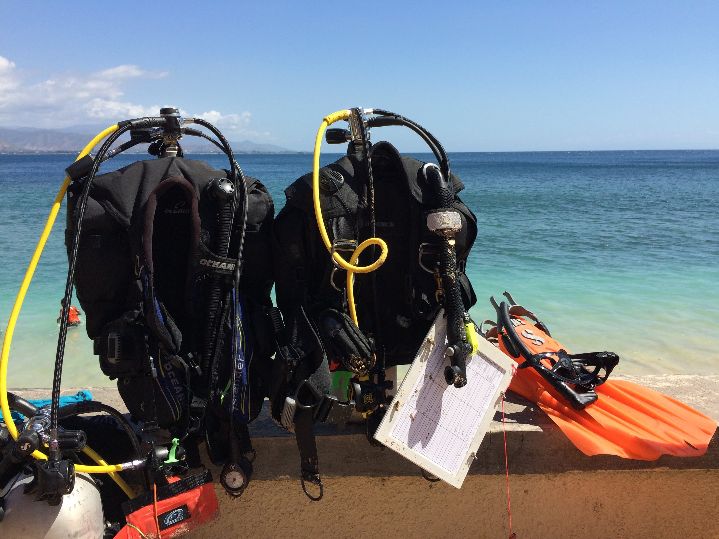 Ready to go diving.