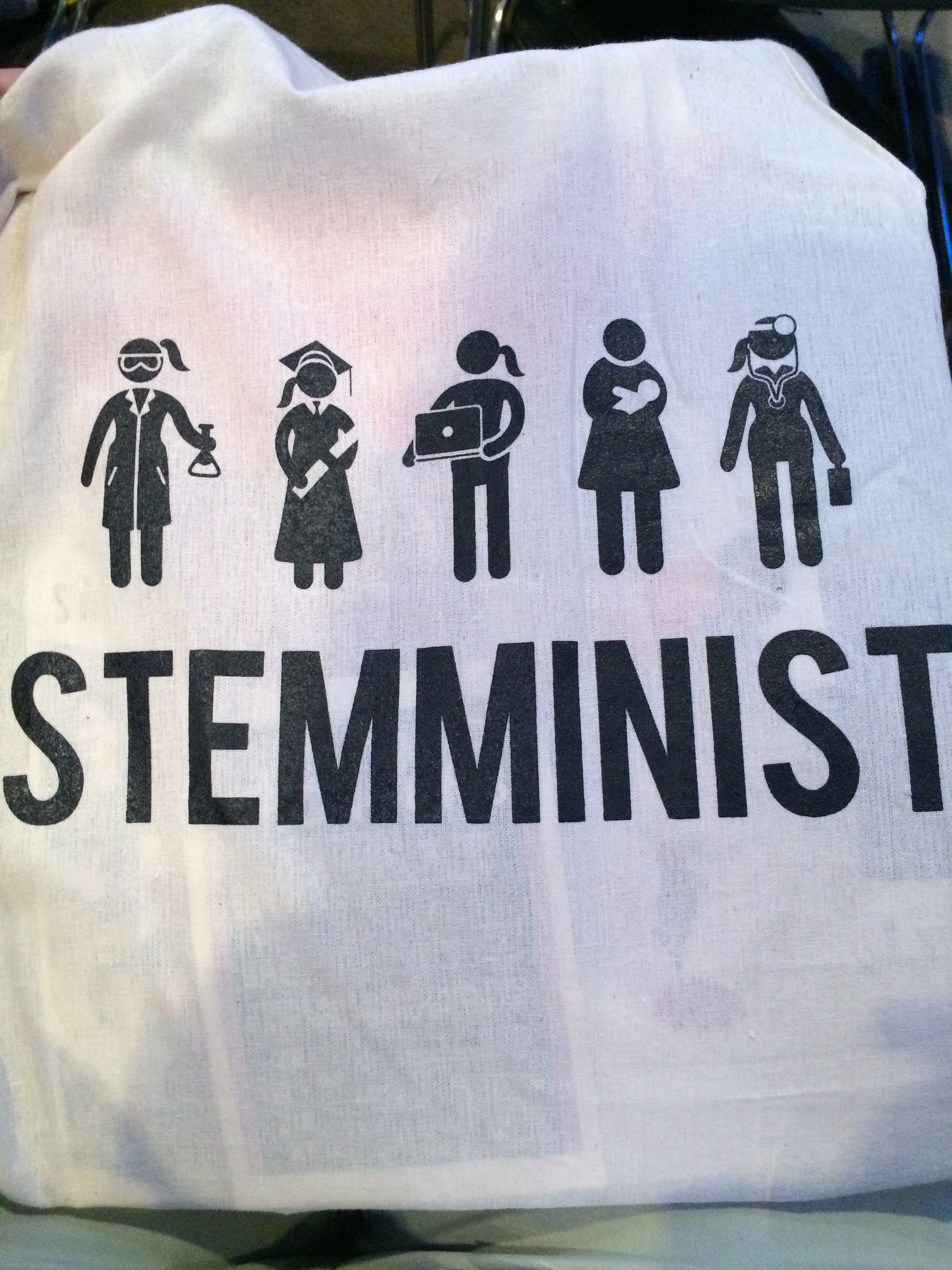 STEMMINIST - new vocabulary and swag.