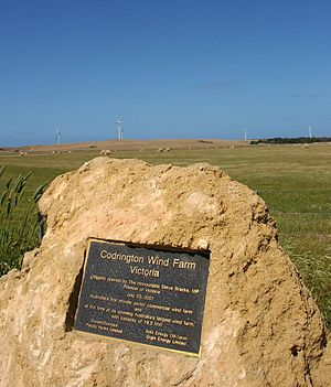 Codrington_Wind_Farm.jpg