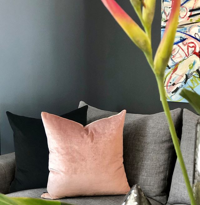The velvety luxury of Como Blush against Toulouse Raven cushion, as seen on the divine Estate sofa by @momufurniture⠀⠀⠀⠀⠀⠀⠀⠀⠀ ⠀⠀⠀⠀⠀⠀⠀⠀⠀ #interiordesign  #momufurniture  #momufurniturerichmond  #furnituredesign  #design  #interiorstyling  #lemarccushions  #sofa  #decor  #homedecor #cushions