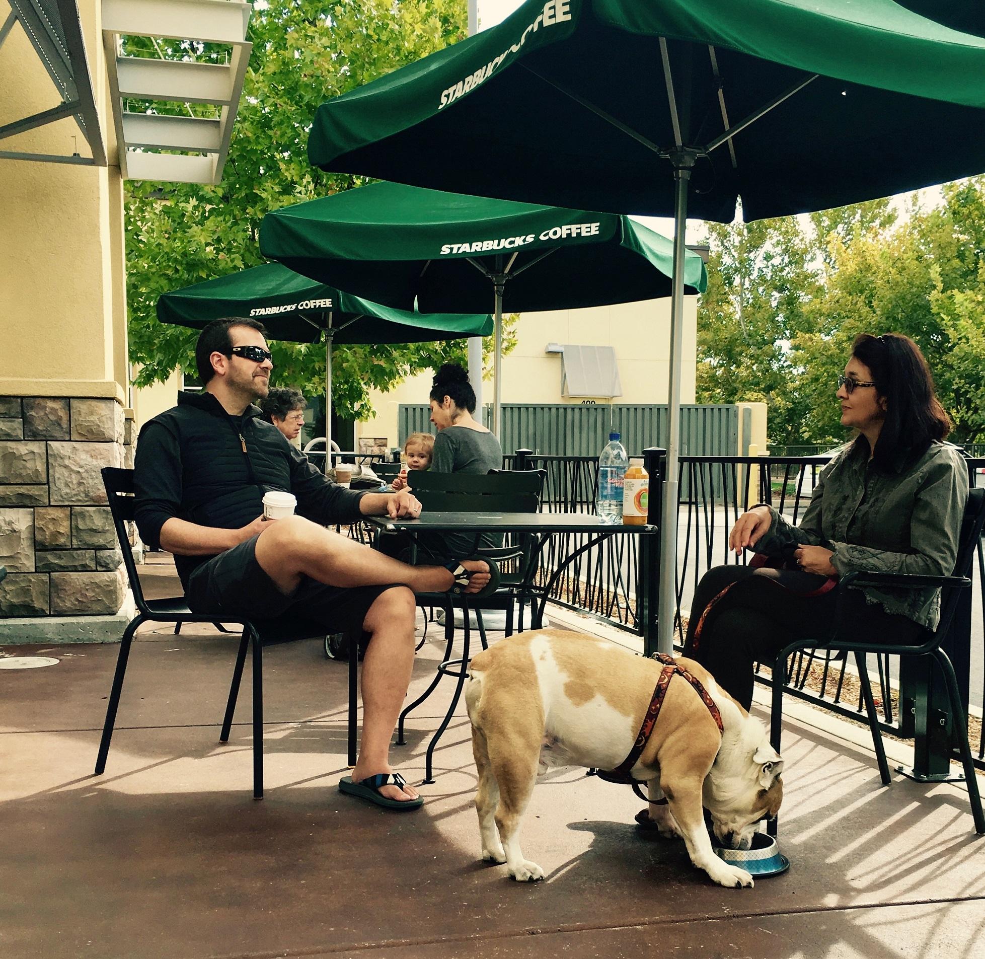 IMG_2061 Gordo and family visit Starbucks.jpg