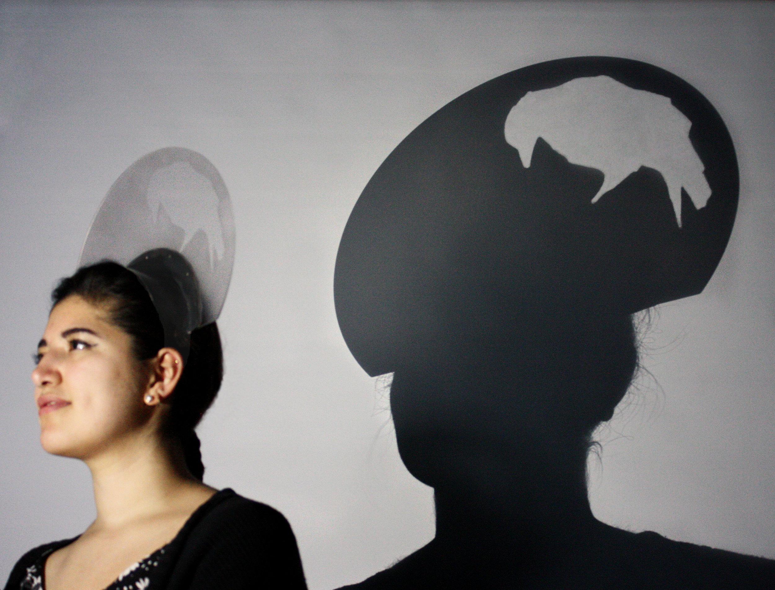 The Shadow Diadem