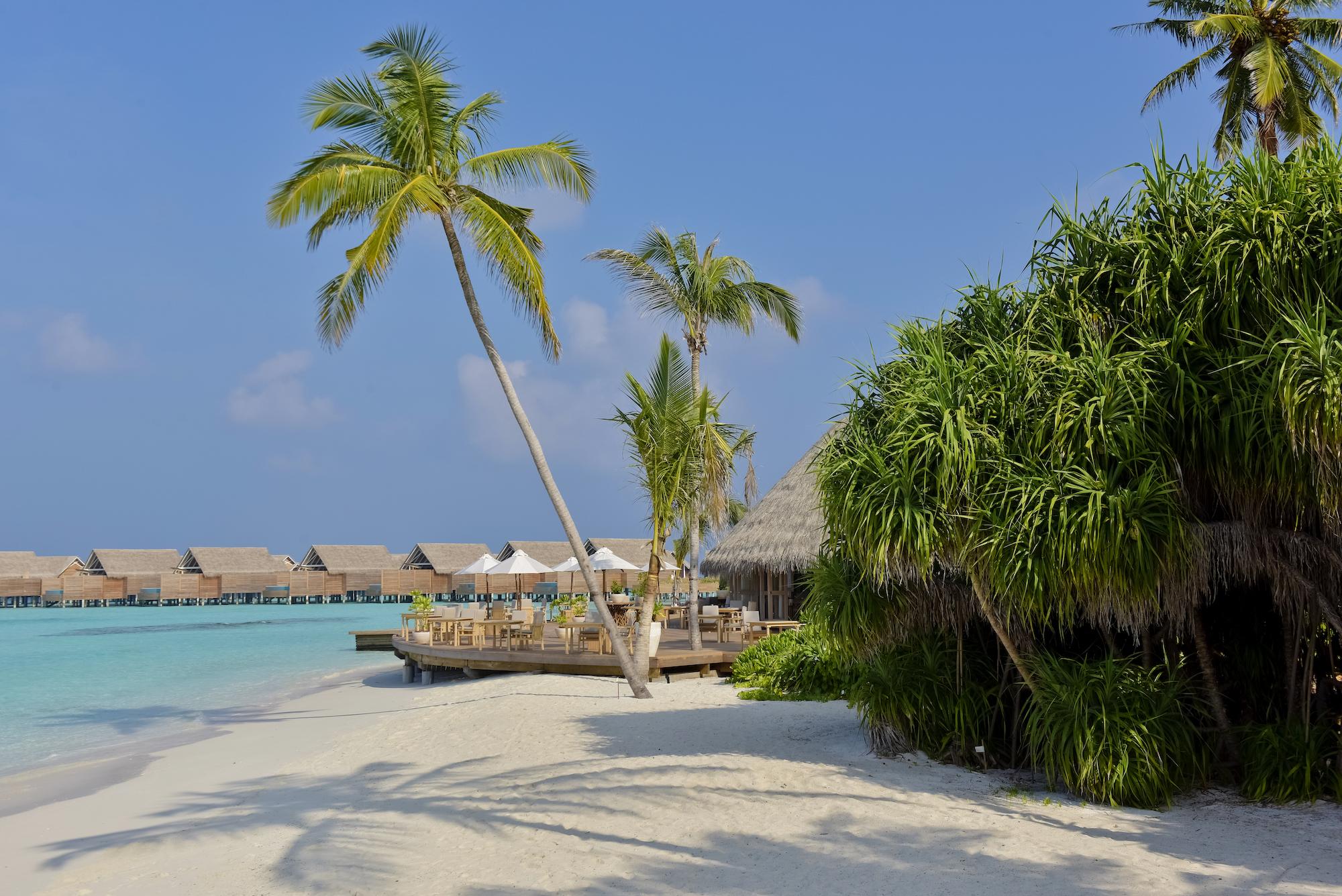 Milaidhoo Maldives dining Ocean restaurant (5).jpg
