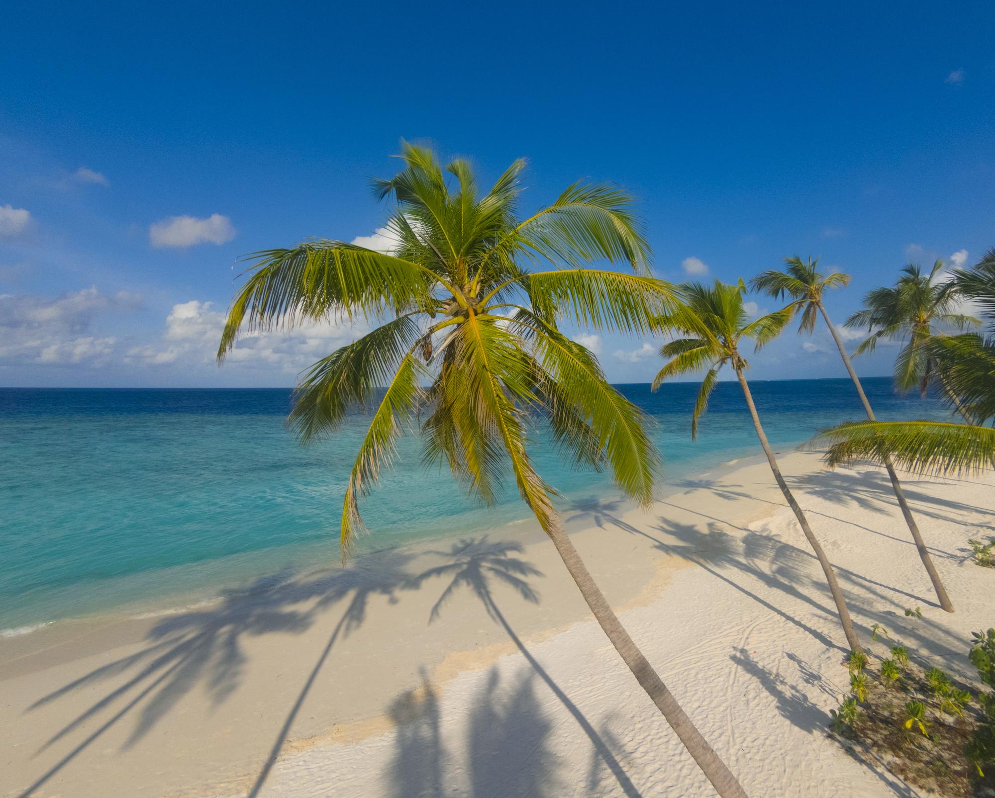 Milaidhoo Maldives beach (3).jpg