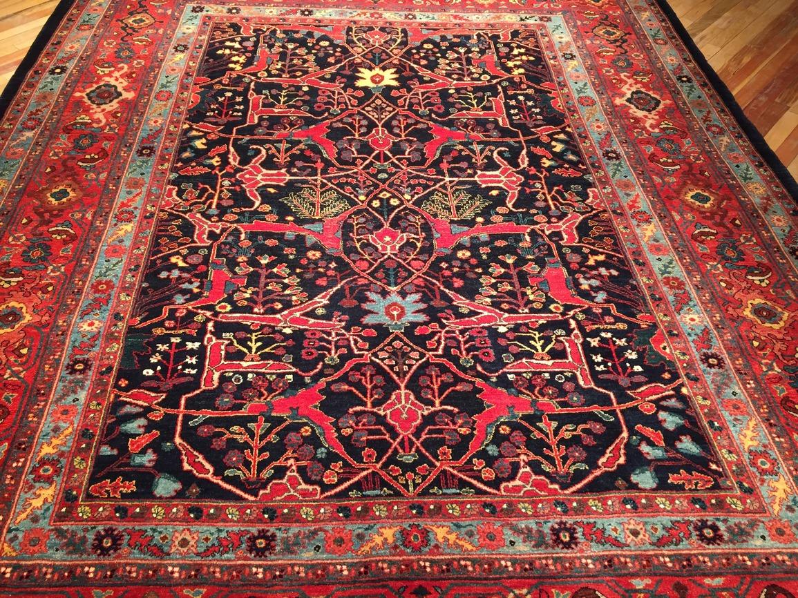 Persian Garrus Bidjar