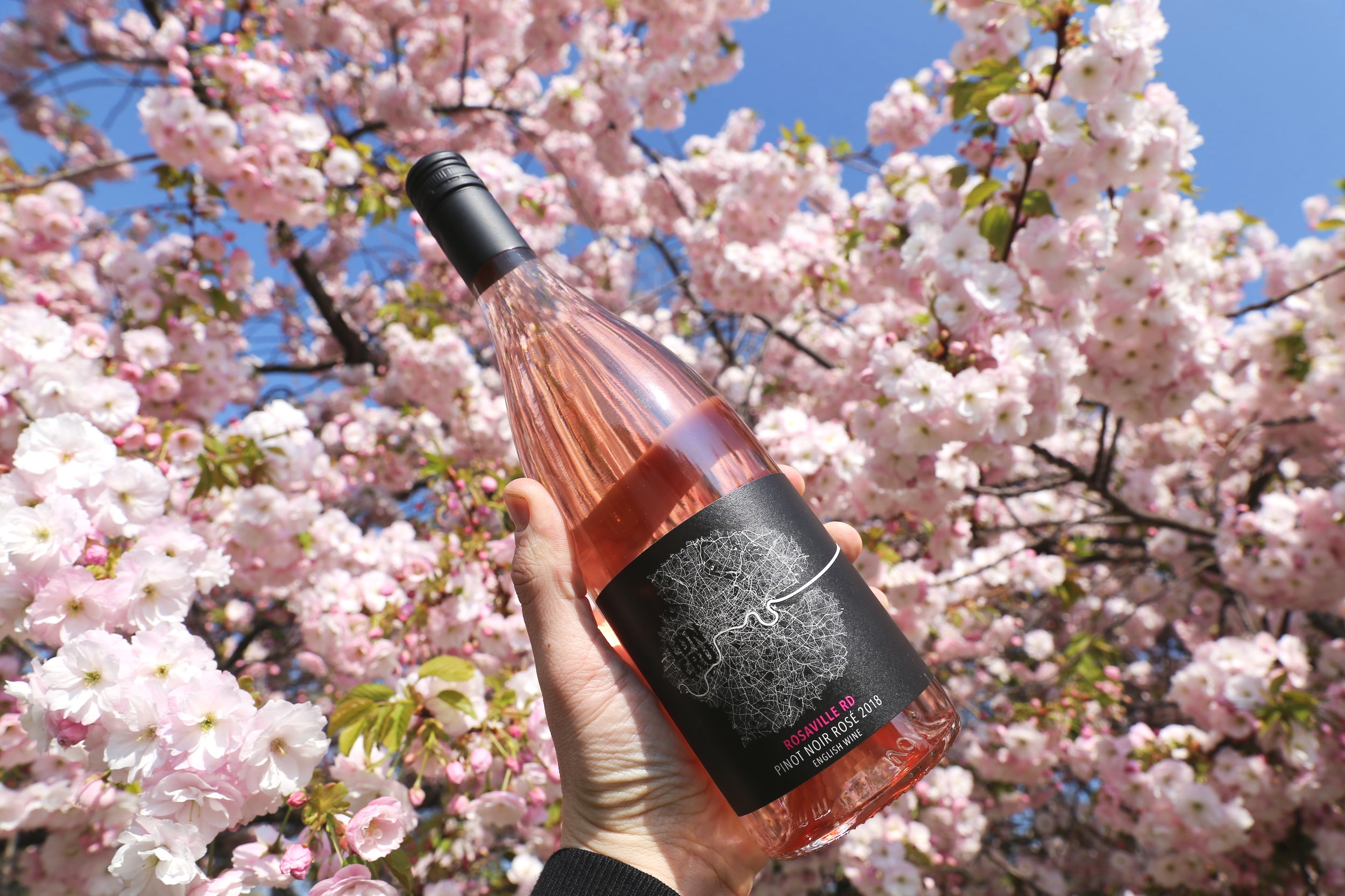 The perfect Spring wine