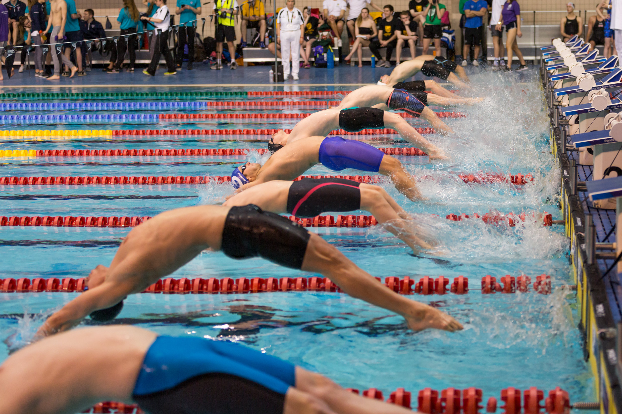 BUCS_Nationals_SwimmingFinalsSun_Action-2698.jpg