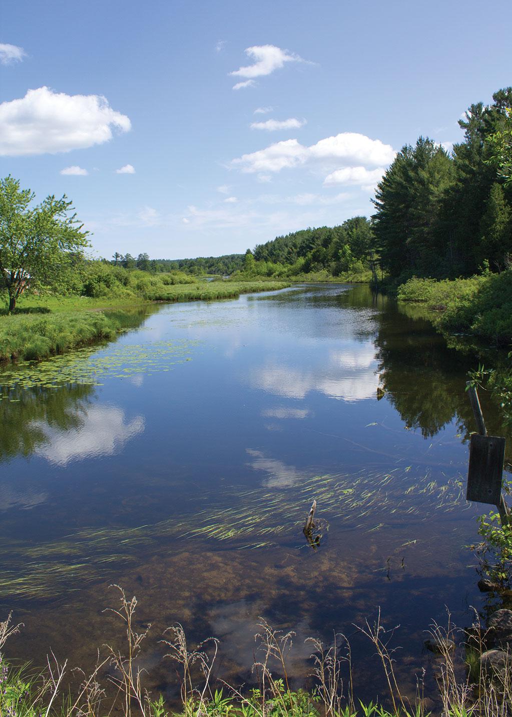 Dacre Creek